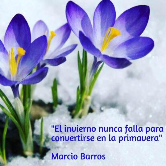 Marcio. Barros